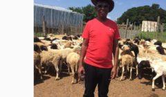 Shaka Sisulu And Julius Malema In Twitter War Over Herbex