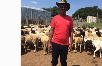 Shaka Sisulu And Julius Malema In Twitter War Over Herbex