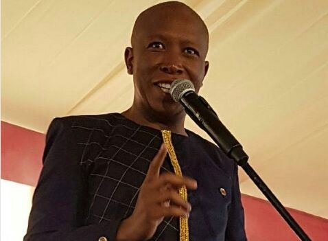 """julius malema In 2011 south africa youth leader julius malema told his supporters that the white farmer's land must be shared by all black africans malema was arrested for playing """"kill the boer (white."""